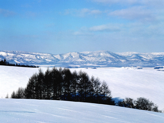 photorack-invierno