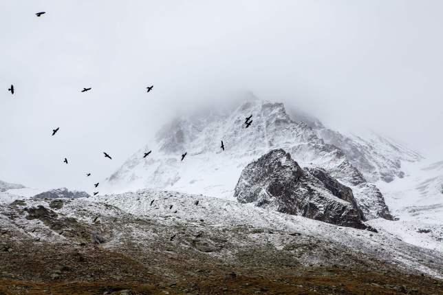 public-domain-images-montaña-nevada